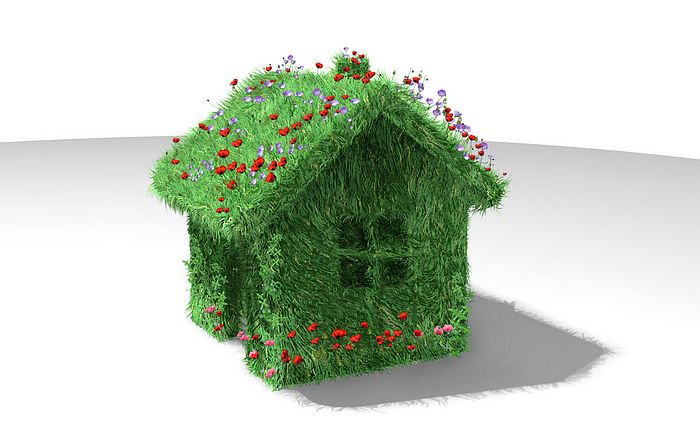 Creative_CG_green_house_2